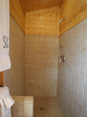 Hubbard's Yellowstone Lodge: hugh walk in shower