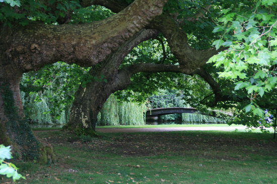 Mottisfont, UK: Traumgarten