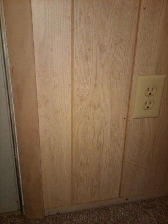 Clinton Inn: Food splatter on the paneling.  Not cleaned.  (We cleaned it ourselves because we were so grosse