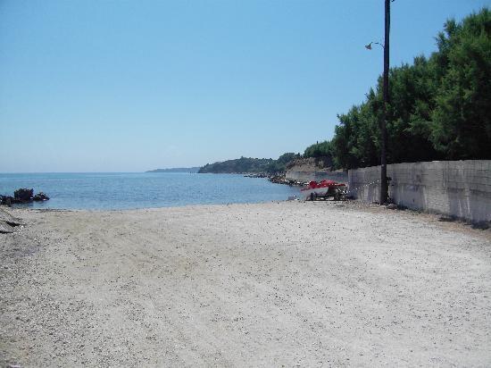 Tsamis Zante: Solo Pesce Restaurant View