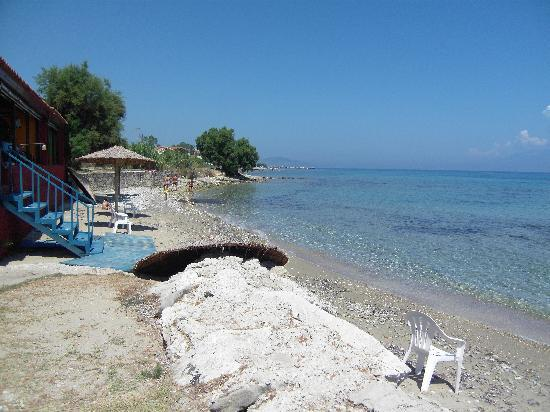 Tsamis Zante: Solo Pesce View Of Beach