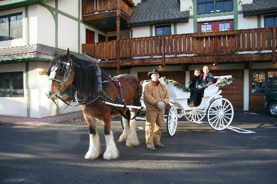 Appenzell Inn: Enjoy the scenery on a cozy carriage ride.