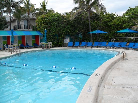 Heated saltwater pool picture of colony hotel and cabana - Hotels with saltwater swimming pools ...