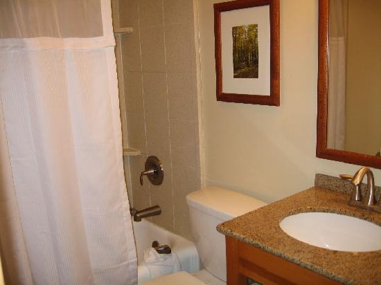 Bear Mountain Inn's Overlook Lodge: bathroom