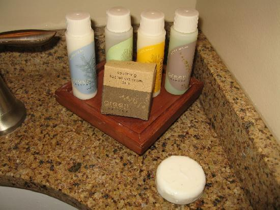 Bear Mountain Inn's Overlook Lodge: toiletries