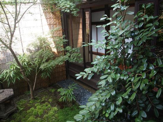 Kazariya: garden