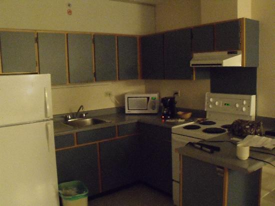 Gage Residence at UBC: 1 Bd Suite kitchen