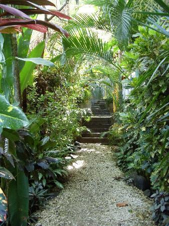 Hotel Raratonga: Incredible, well maintained landscaping