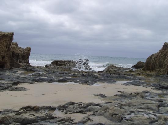 Isola di Porto Santo, Portogallo: porto santo
