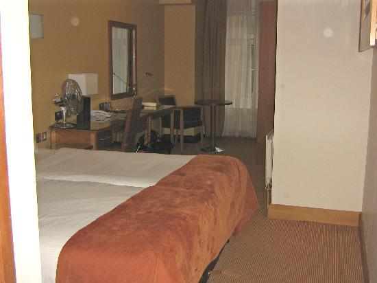 Treacys Hotel Waterford: The room itself appeared clean & tidy