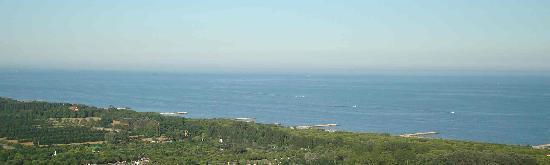Costa veneziana