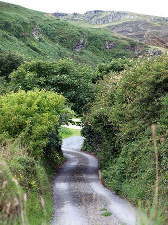Tintagel, UK: Fahrweg des Jeeps mit Blick auf Tintagel Castle