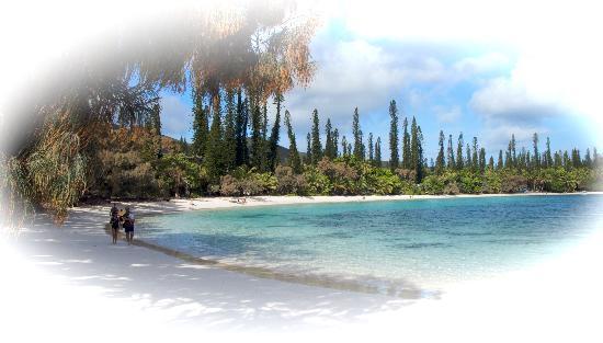 Noumea, Nueva Caledonia: Iles de pins