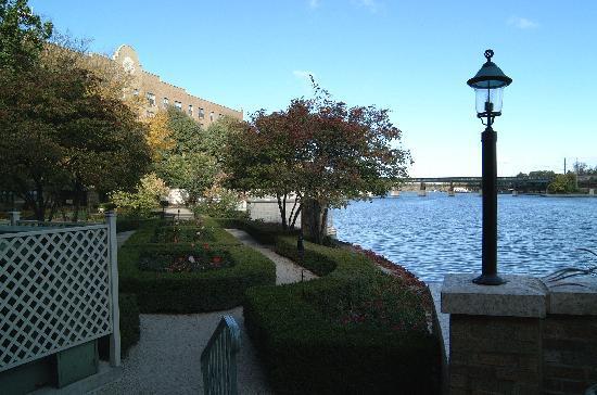 Hotel Baker: Rose Garden