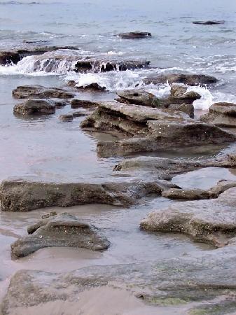 cinnamon beach at ocean hammock beach resort  beach rocks at low tide beach rocks at low tide   picture of cinnamon beach at ocean      rh   tripadvisor