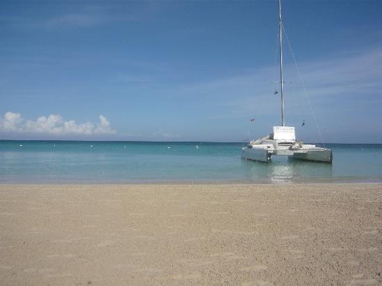 Las Sirenas Hotel & Condos: la spiaggia del Las Sirenas