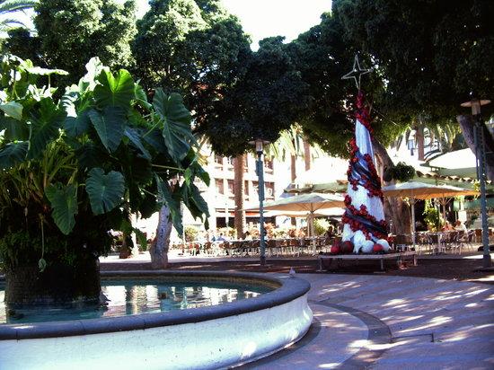 Columbus Plaza: plaza Charco