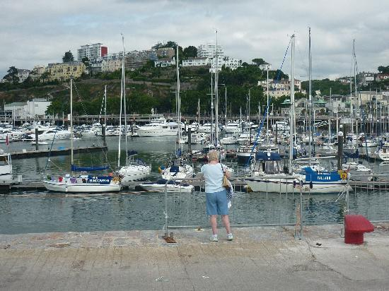 Hotel De La Mer: Torquay harbour, 10 minute bus ride from hotel.