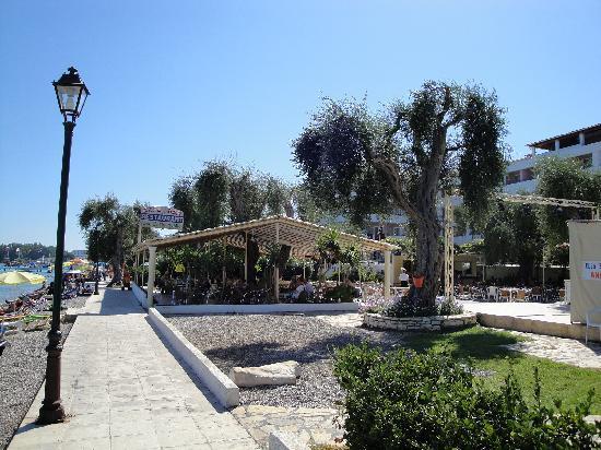 Dassia, Greece: Promenade mit Strandtaverne