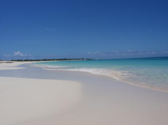 Codrington, Barbuda: ..favolosa spiagga..