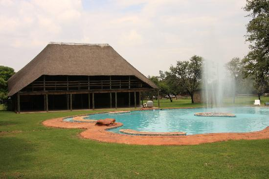 Bundu inn reviews pretoria south africa tripadvisor Swimming pool maintenance pretoria