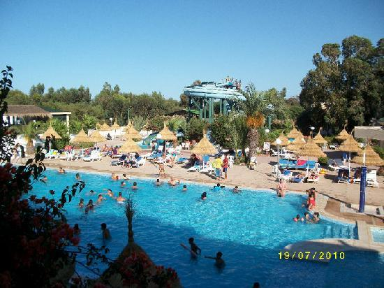 Piscine  Photo De Htel Acqua Viva Gammarth  Tripadvisor