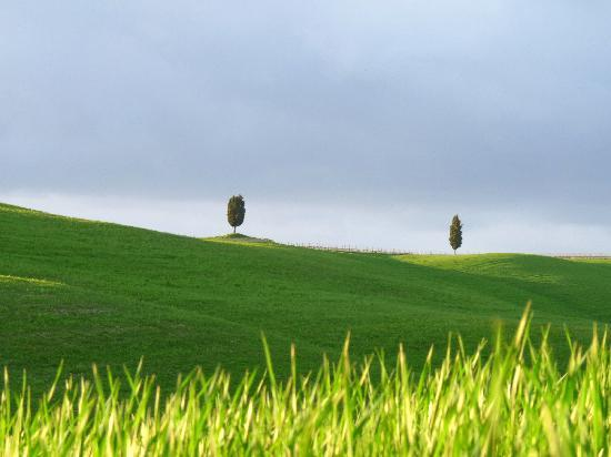 Toscana, Italien: Val d'Orcia