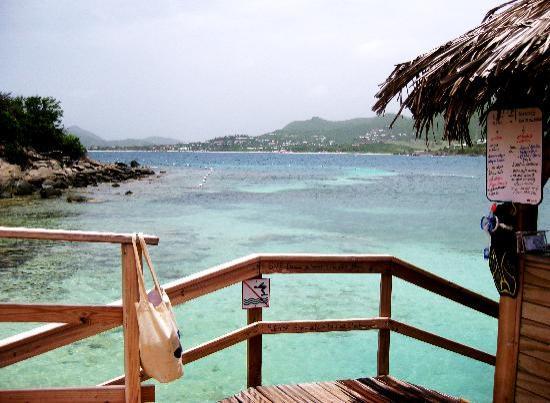 Eco-Snorkeling: Site of snorkel area.