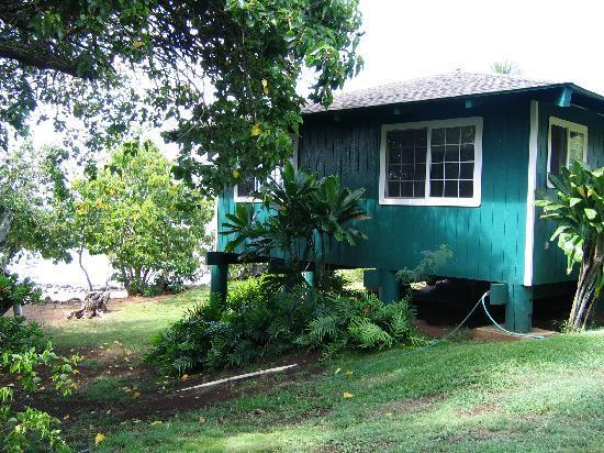 Dunbar Beachfront Cottages: Cottage