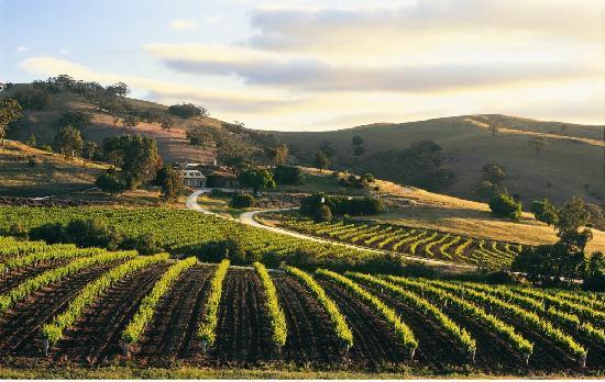Κοιλάδα Barossa, Αυστραλία: Bethany Wines, Barossa
