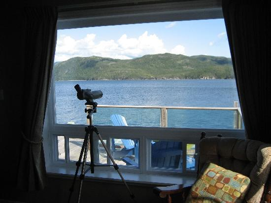 Seaside Suites Gros Morne Newfoundland照片