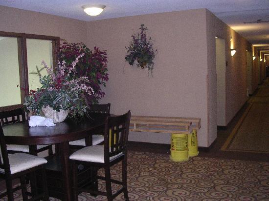 Best Western Delta Inn: Hallway