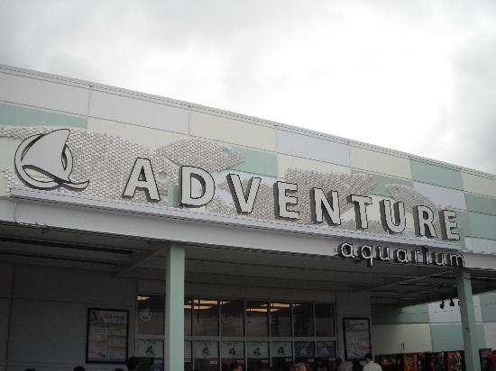 The Entrance To The Aquarium Picture Of Adventure