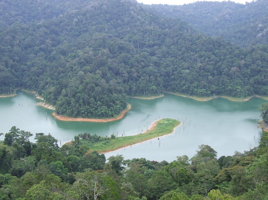 Tasik Temenggor Discovery Island: Sight from a tower at a nearby island.