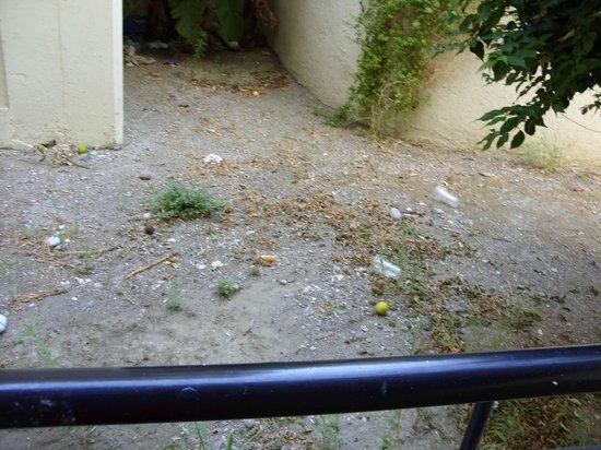 Filerimos Village Hotel: Terrazzo