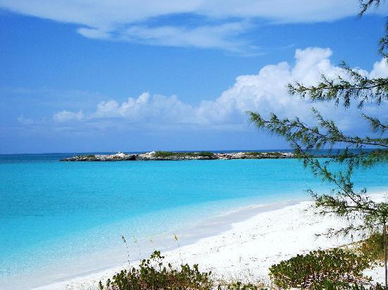 Coral Gardens: Tropic of Cancer Beach