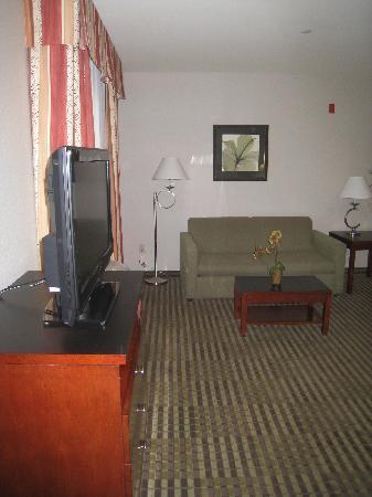 Hampton Inn & Suites Clovis - Airport North: TV and Sofa aera