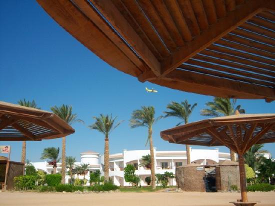 Grand Seas Resort Hostmark: Genearl view