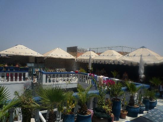 Riad Hotel Essaouira: Hotel Essaouira rooftop