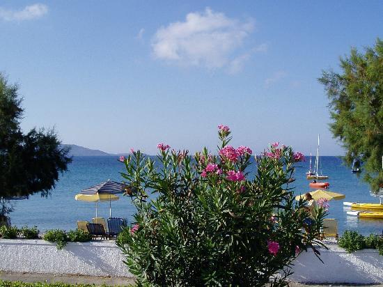 Zefiros Beach Hotel: From the terrace