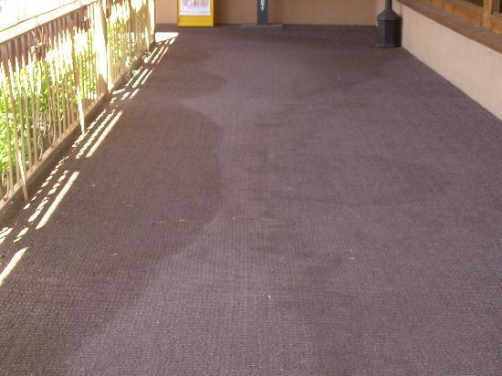 Garrett's Desert Inn : Stained carpeting in hallway