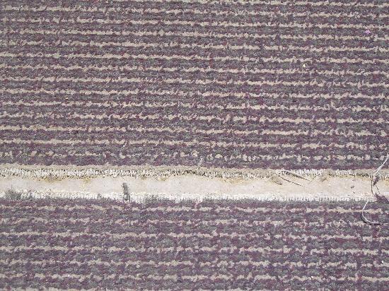 Garrett's Desert Inn: Hallway carpeting