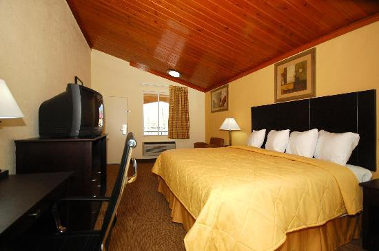 Quality Inn Tullahoma: KING3