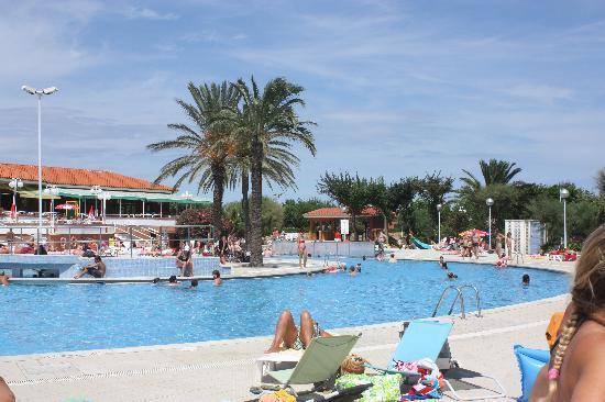 El Delfin Verde: Pool :-)