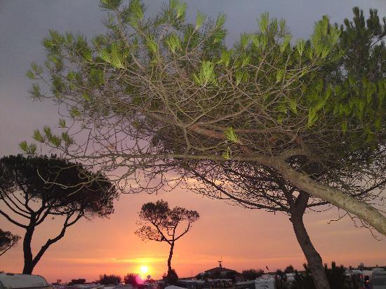 El Delfin Verde: Sonnenaufgang 7 Uhr