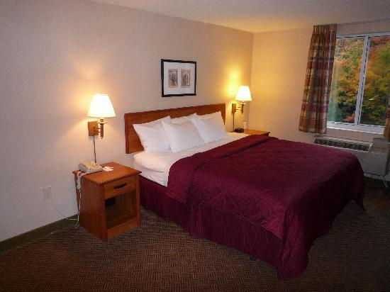 Holiday Inn Express & Suites Lincoln East - White Mountains: Standard Guest Room