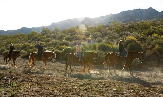 Phoenix, AZ: Horseback Riding at South Mountain