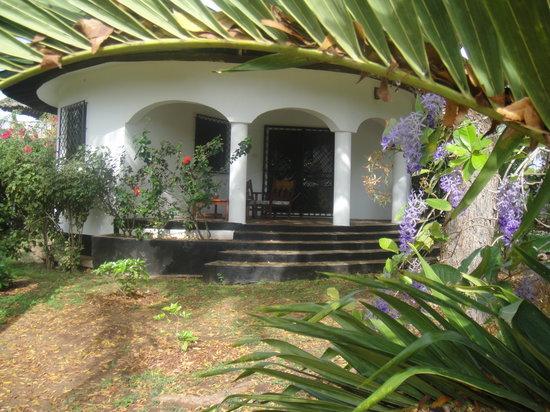 accomadation to rent at savannah
