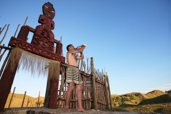Waimarama Maori Tours: Arch of the Ancestors Tour- Cruise Ship passengers