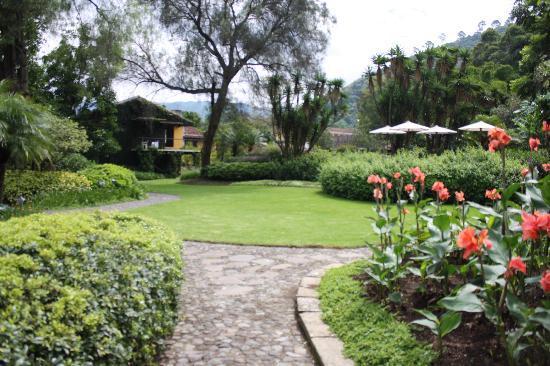 Quinta de las Flores: Quita de las Flores garden